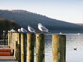Gildabrook Cottage - Lake District - 1042860 - thumbnail photo 16