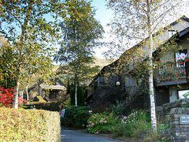 Acorns - Lake District - 1042879 - thumbnail photo 12