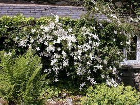 Greenbank - Lake District - 1043102 - thumbnail photo 14