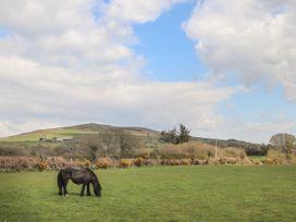 Rhodnant - North Wales - 1044254 - thumbnail photo 37