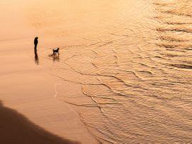 Gecko Beach - Cornwall - 1044438 - thumbnail photo 15