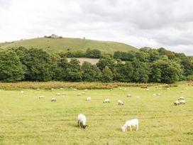 Kerridge - Dorset - 1045054 - thumbnail photo 37