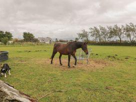 Bron Gadair - Anglesey - 1046068 - thumbnail photo 20
