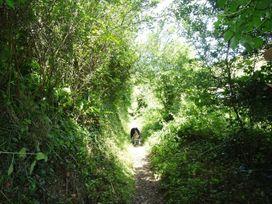 Two Acres - Cornwall - 1047754 - thumbnail photo 10