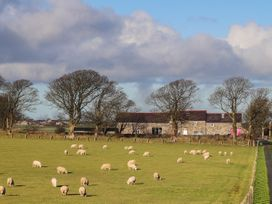 The Outbuildings - Anglesey - 1048267 - thumbnail photo 54