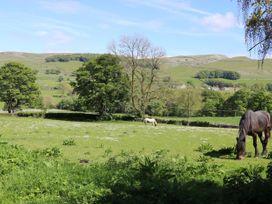 Low Bank - Yorkshire Dales - 1048601 - thumbnail photo 9