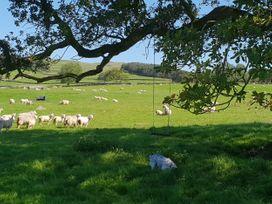 Anneside - Lake District - 1048651 - thumbnail photo 52
