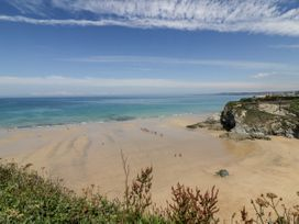 Palm View - Cornwall - 1049586 - thumbnail photo 15