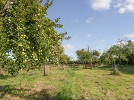 The Gardens - Somerset & Wiltshire - 1049668 - thumbnail photo 42