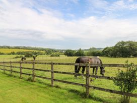 Moody House Farm - Lake District - 1049996 - thumbnail photo 44