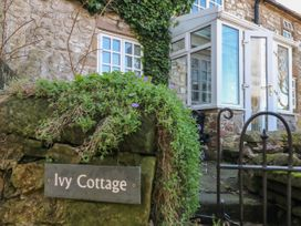 Ivy Cottage - Peak District - 1051655 - thumbnail photo 3