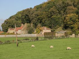 Gormire Cottage - Whitby & North Yorkshire - 1052313 - thumbnail photo 21