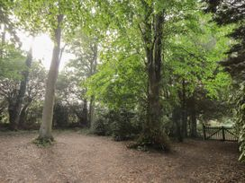 Woodlands By The Sea Cottage - Kent & Sussex - 1052742 - thumbnail photo 21