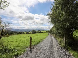 Woodland Pod - North Wales - 1053186 - thumbnail photo 19