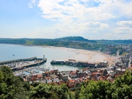 The Lookout - North Yorkshire (incl. Whitby) - 1053283 - thumbnail photo 25