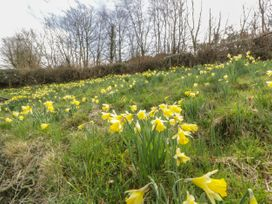 Mountain Hall  View - Scottish Lowlands - 1053445 - thumbnail photo 30