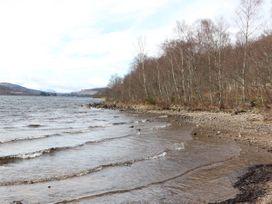 Bruce - Scottish Lowlands - 1053572 - thumbnail photo 15