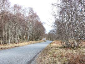 Bruce - Scottish Lowlands - 1053572 - thumbnail photo 14
