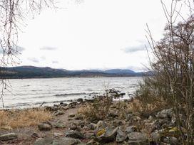 Bruce - Scottish Lowlands - 1053572 - thumbnail photo 17