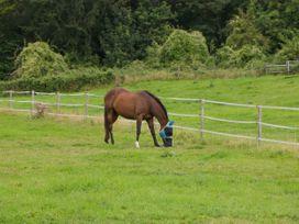 Beulah - Somerset & Wiltshire - 1053944 - thumbnail photo 18