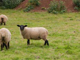 Beulah - Somerset & Wiltshire - 1053944 - thumbnail photo 20