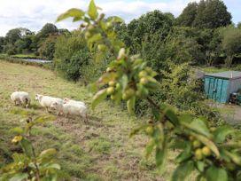 Llety'r Bugail - North Wales - 1054114 - thumbnail photo 15