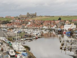 Laridae - Whitby & North Yorkshire - 1054262 - thumbnail photo 22
