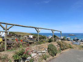 Guillemot - Cornwall - 1054365 - thumbnail photo 18