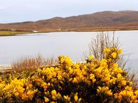 Lochside - Scottish Highlands - 1056125 - thumbnail photo 35