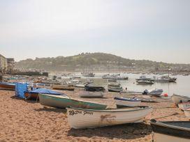 Sea Aster - Devon - 1056973 - thumbnail photo 16