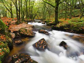 The Granary - Cornwall - 1057881 - thumbnail photo 18