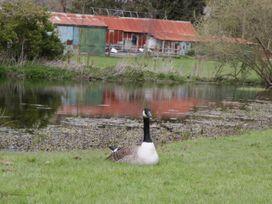 The Courtyard - Hilltop Barn - Dorset - 1058078 - thumbnail photo 41