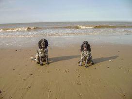 11 Seaward Crest - Norfolk - 1058274 - thumbnail photo 15