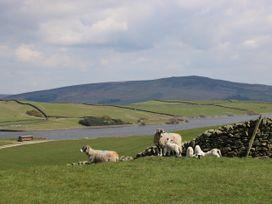 Moorlands - Yorkshire Dales - 1058570 - thumbnail photo 32