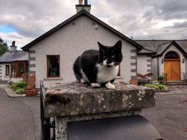 Torview House - Scottish Lowlands - 1058613 - thumbnail photo 37