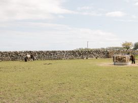 Ketburn Shepherds Hut - Scottish Lowlands - 1058902 - thumbnail photo 15