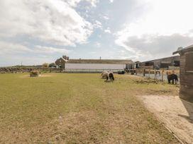 Ketburn Shepherds Hut - Scottish Lowlands - 1058902 - thumbnail photo 17