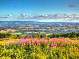The Linhay - Devon - 1060087 - thumbnail photo 27