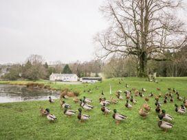 Beckside Cottage - Lake District - 1061080 - thumbnail photo 18