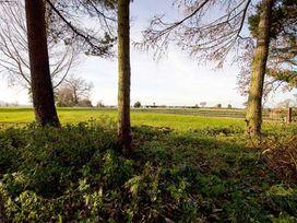 Beechwood Cottage - Whitby & North Yorkshire - 1061617 - thumbnail photo 10