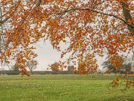 Elmwood Cottage - Whitby & North Yorkshire - 1061618 - thumbnail photo 14