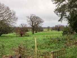 Oak - Kent & Sussex - 1062082 - thumbnail photo 3