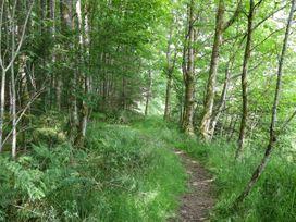 Cwm Bedw - Mid Wales - 1062162 - thumbnail photo 32