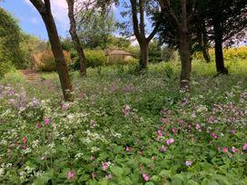Under Acre Cottage - Dorset - 1062552 - thumbnail photo 49