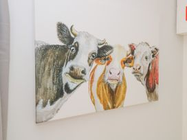The Cuddly Cow - County Donegal - 1063603 - thumbnail photo 9