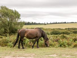 The Stables - Somerset & Wiltshire - 1063840 - thumbnail photo 8