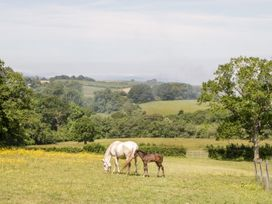 The Stables - Somerset & Wiltshire - 1063840 - thumbnail photo 17