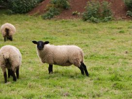 Suffolk - Somerset & Wiltshire - 1063938 - thumbnail photo 17
