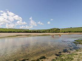 Inner Tide - Cornwall - 1064138 - thumbnail photo 37