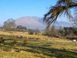Pyet - Lake District - 1064564 - thumbnail photo 46